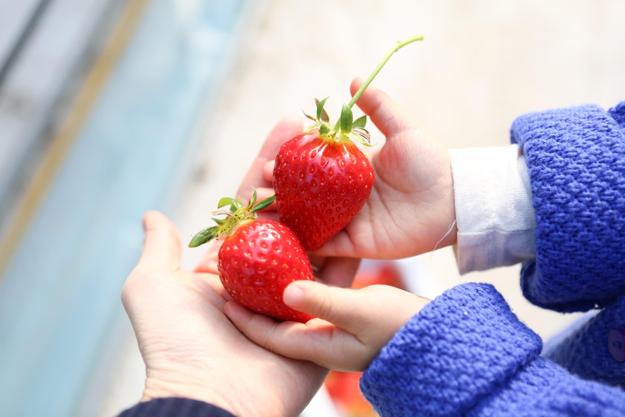 Hướng dẫn cách bổ sung chất xơ cho trẻ đúng cách